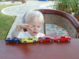 will and cars