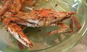 Crabs with Old Bay