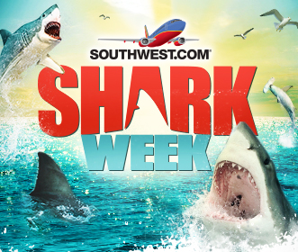 southwest shark week sweepstakes contest alert southwest and discovery take a bite 1782