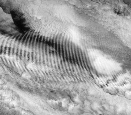 Wave Cloud
