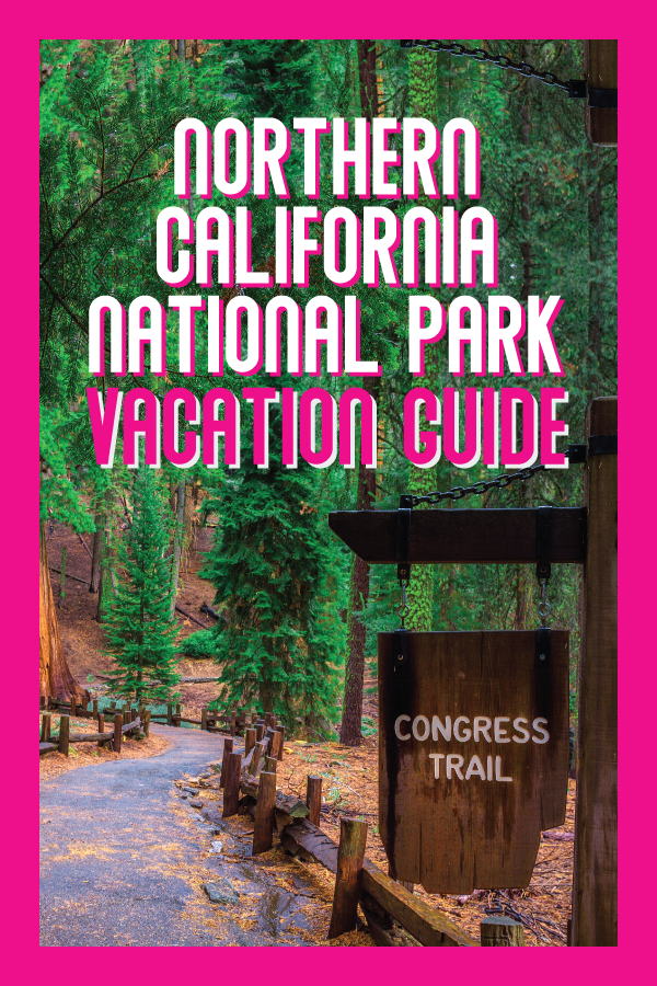 northern california national park guide.png
