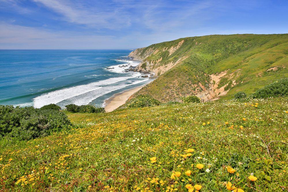 California Coastal Camping.jpg