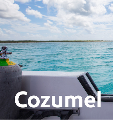 Destination Cozumel: Dive In and Enjoy Paradise