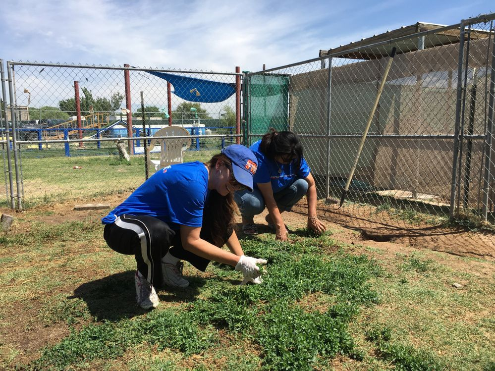 Southwest Employees from the El Paso Station volunteering for a cleanup day at Animal Rescue League of El Paso