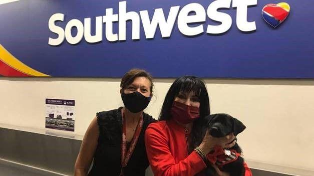 Left to right: Las Vegas-based Flight Attendant Marcel, El Paso Customer Service Agent Elizabeth, and Harris the pup