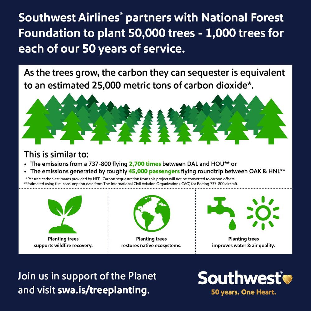 National Forest Foundation.jpg