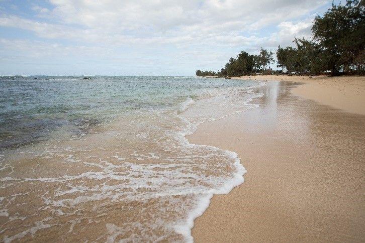 HNL Beach.jpg