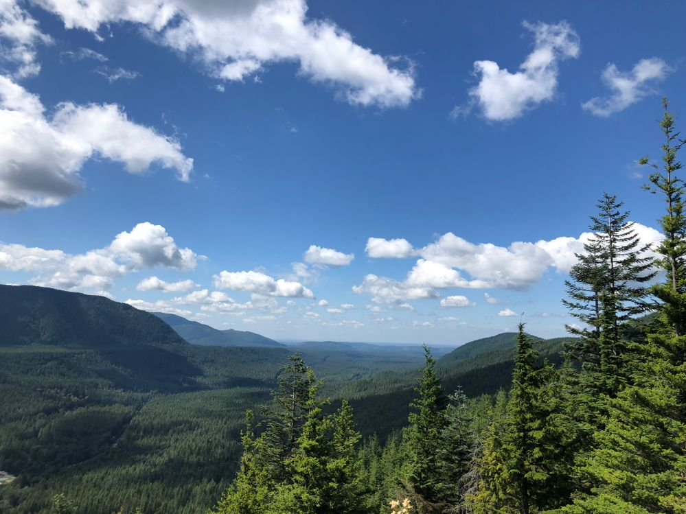 Hikes through Snowqualmie National Forest are great for all ages and skill levels and offer some of the most stunning views of Washington.