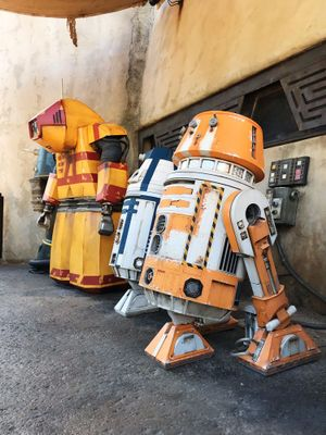 Your Guide to Star Wars: Galaxy's Edge at Disneyland and Disney World